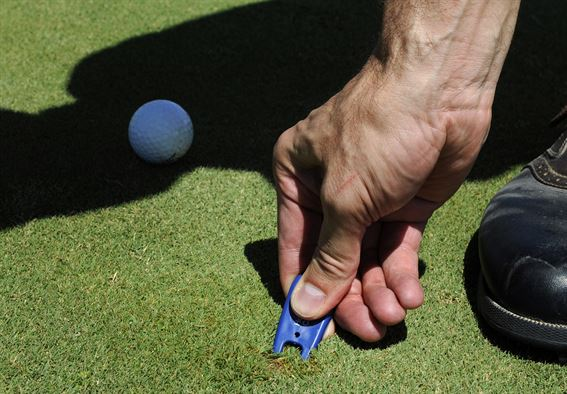 How to Properly Repair a Ball Mark [Infographic]