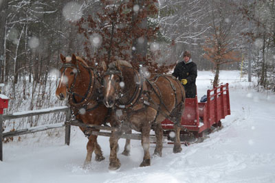 Please implement new alt text: A man drives a red sleigh down a snow-covered lane on a wintry day.