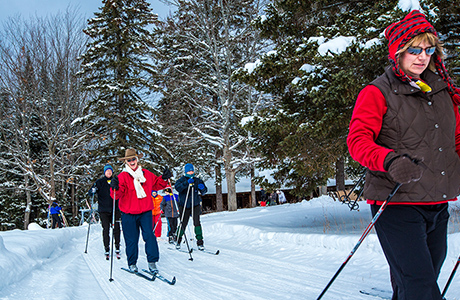 cross_Country_Skiing_Treetops460