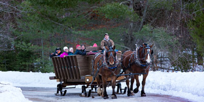 A sleigh full of guests glides down a road on a snowy day.