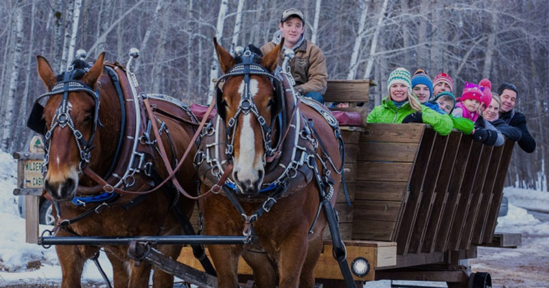 Project Nature Sleigh Rides