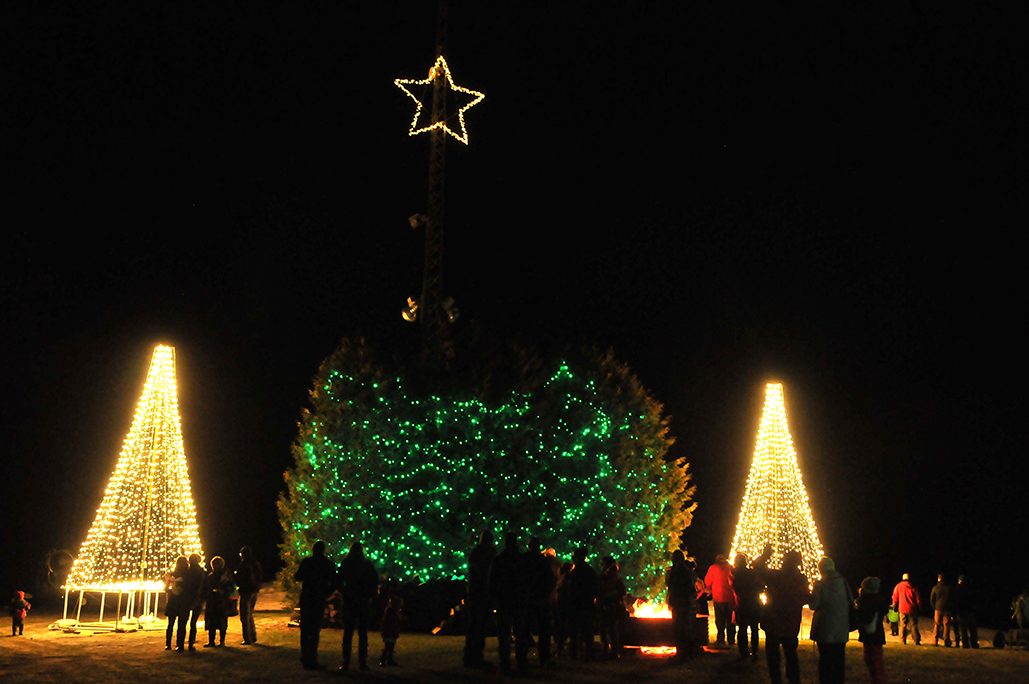 Outdoor trees all lit up for Christmas with people standing around a fire