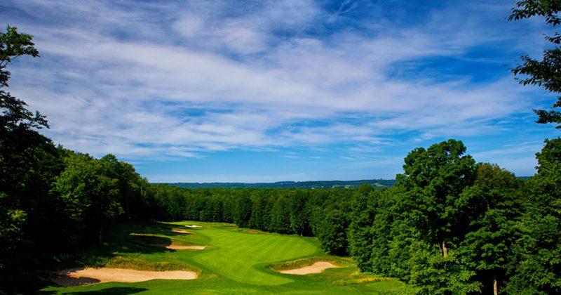 treetops_golf_Signature