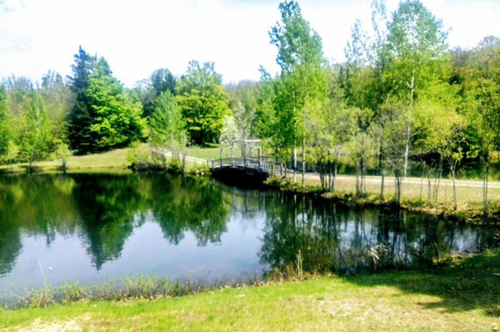 Wilderness Cabin Bridge