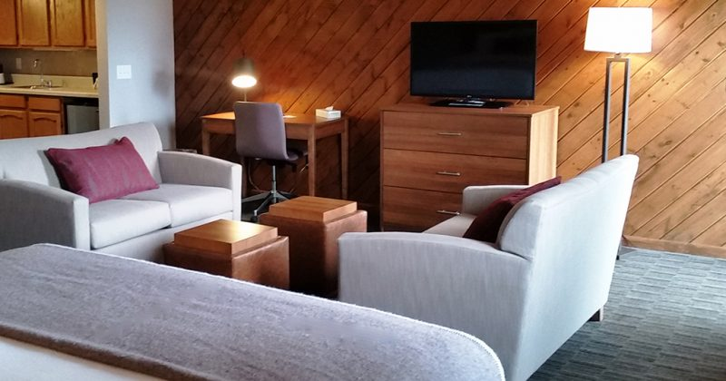 Interior of Treetops hotel room with 2 small couches, tv, and 2 beds