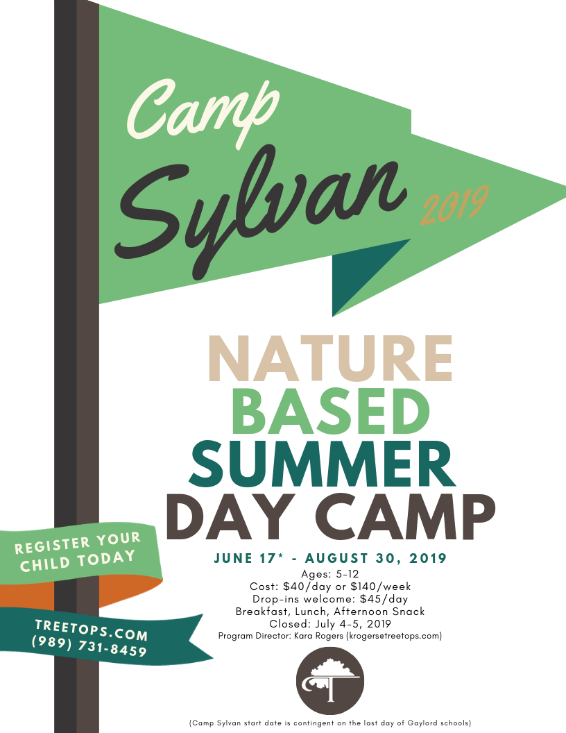 Treetops Camp Sylvan flyer with green flag and text